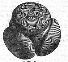 Towie Petrosphere